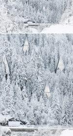 tree-shaped-homes-forest-suburbia-konrad-wojcik-2